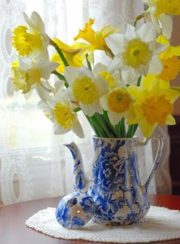 One of my favorite combos is blue and white china vase/jar with white and yellow flowers. These are daffodils