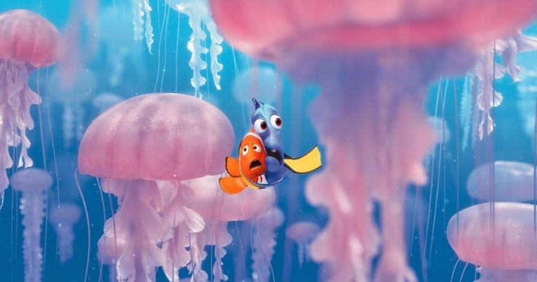 Image result for marlin nemo jellyfish'